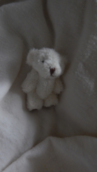 tiny teddy bears babies memory box 6cm miscarriage FLUFFBALL baby loss