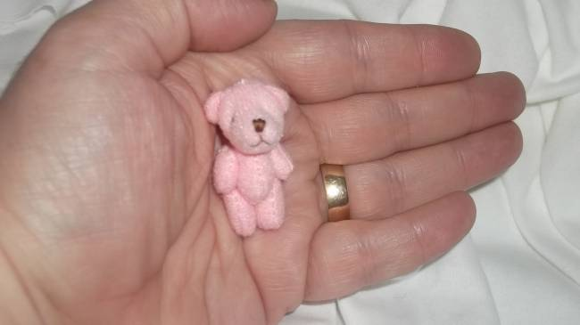 tiny teddies here teddy bear 4cm PENNY pink baby burial gift memory box