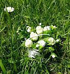 flowers tiny baby burial urn BUCKET FULL POSES Cream