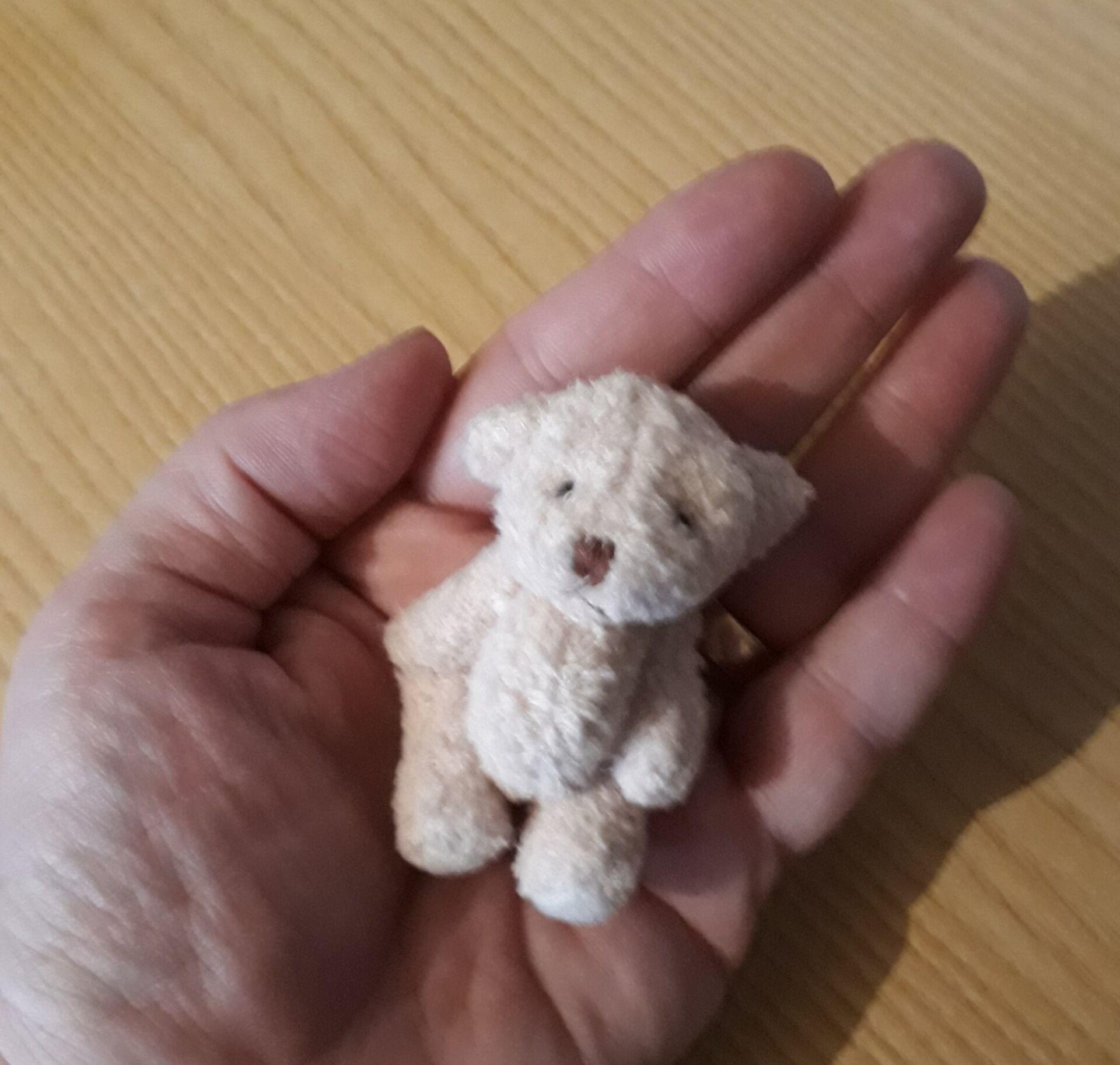 Memory Box Tiny Teddy Bears