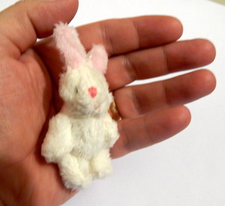 baby gift  BLISSFUL BUNNY  tiny gift