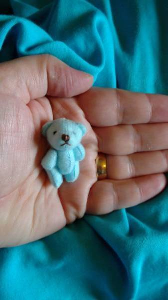 mini teddy bears baby memory box baby loss funeral Teddy bear SPLODGE